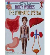 The Lymphatic System – How My Body Works